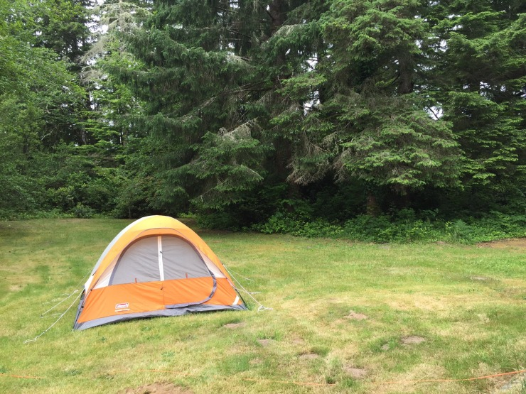 tent in back yard